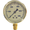 AR0-300 - Bottom Mount Pressure Gauge