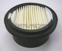Replacement Filter Element for (#2) Canister - 06