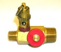 154A - Manifold with Safety Valve